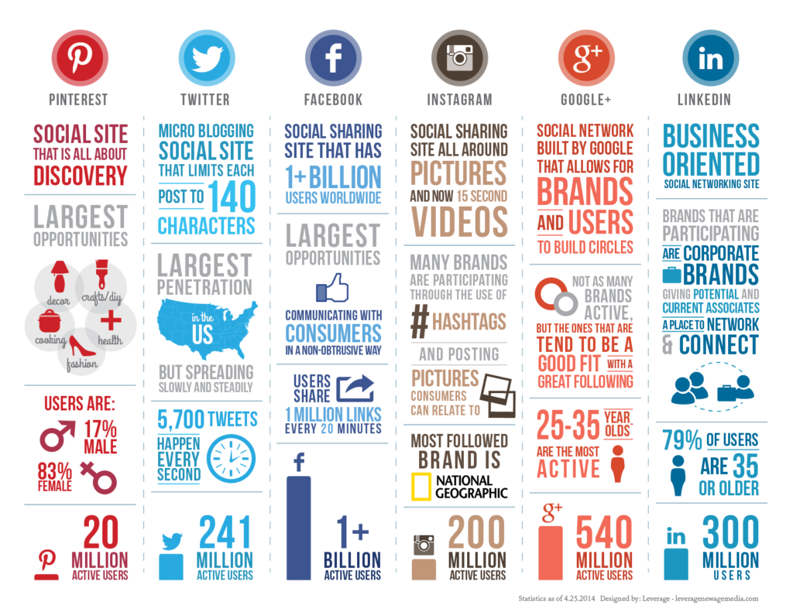 Social Media Infographic Success